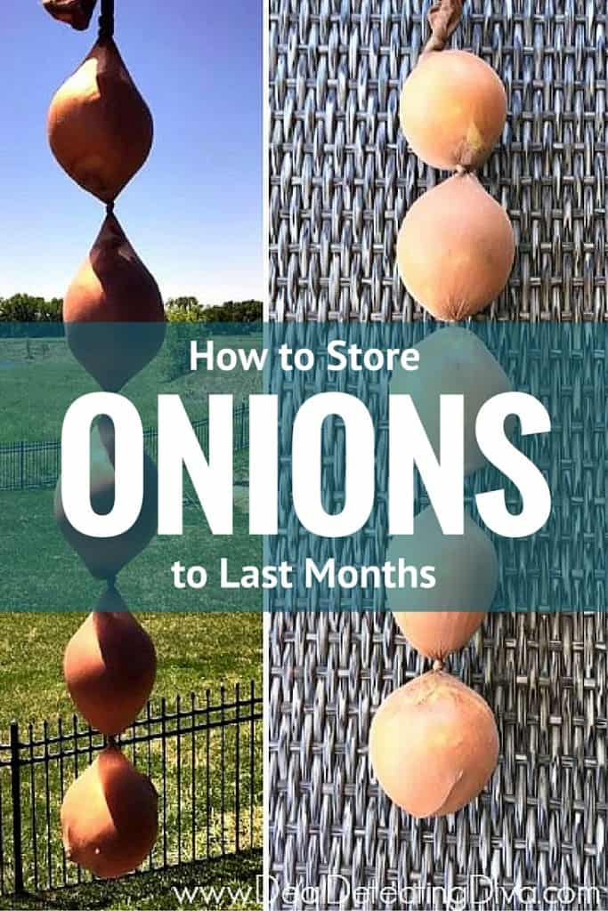 How to Store Onions to Last MONTHS
