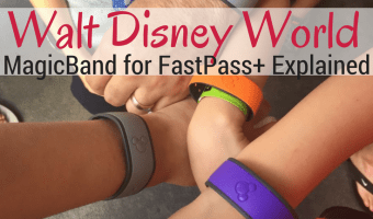 Walt Disney World :: Why You Want a MagicBand for FastPass+
