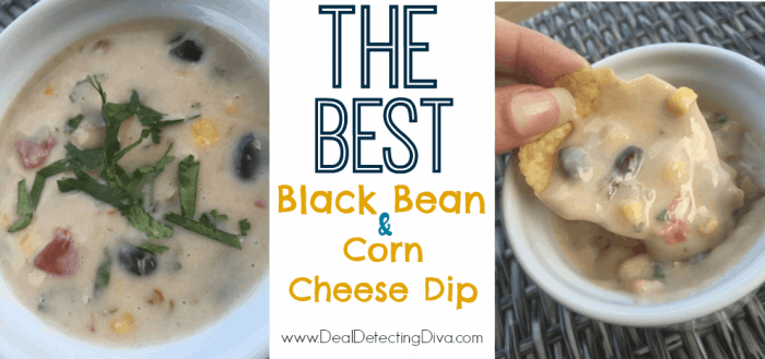 The BEST Black Bean & Corn Cheese Queso Dip