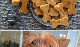 Easy Homemade Pumpkin Dog Biscuits