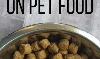 12 Creative Ways to Save on Pet Food