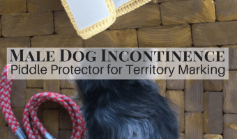 Male Dog Incontinence Band Crochet Pattern: A Piddle Protector for Pooches