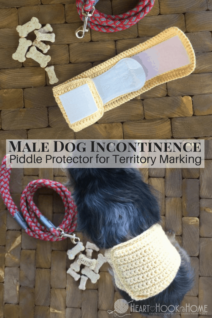 Free Crochet Pattern for Male Dog Incontinence Band