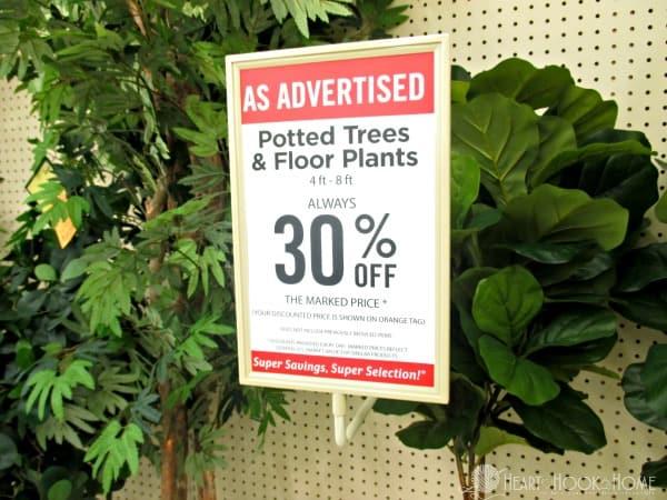 Hobby Lobby Plants Sales