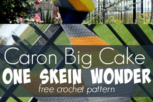 Caron Big Cake One Skein Wonder pattern