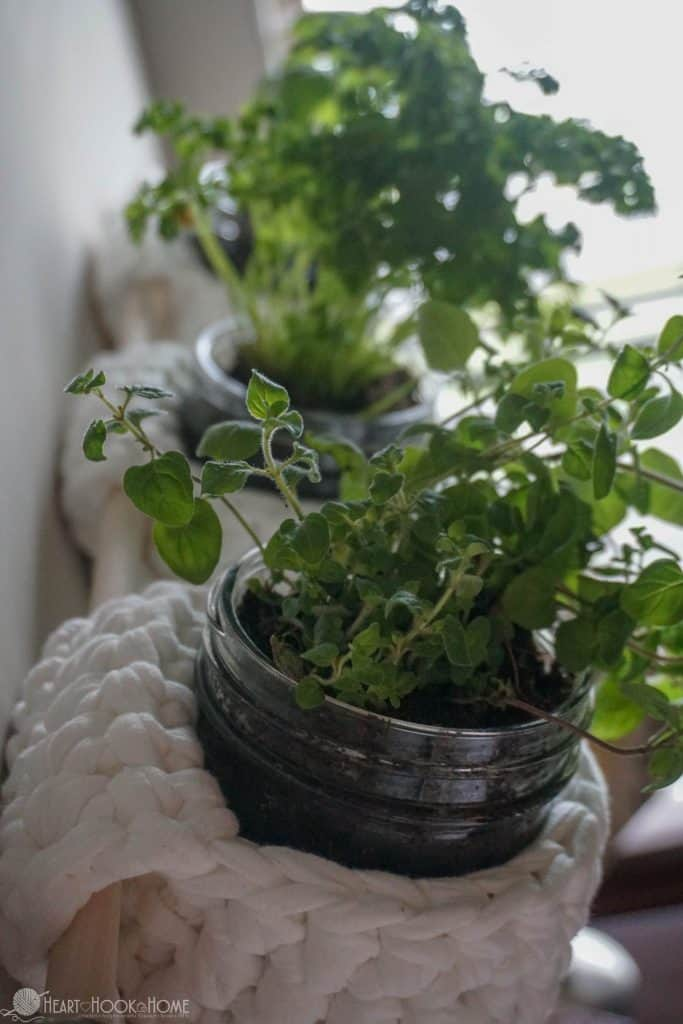 Crocheting a hanging herb garden