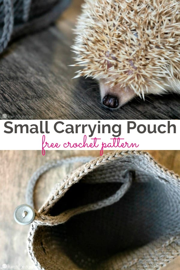 Small Carrying Pouch for Critters