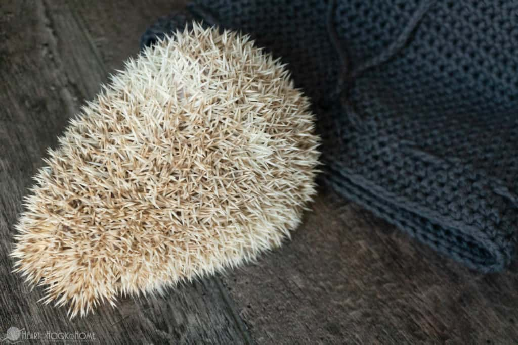 How to make a pouch for your hedgehog