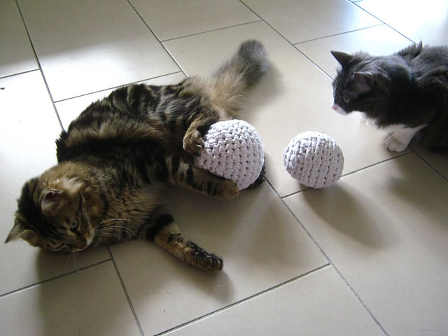 t-shirt yarn cat toys