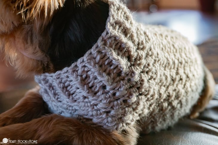 extra small size dog sweater pattern