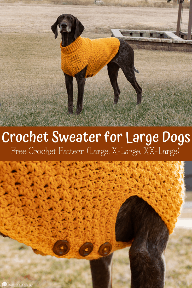 Crochet Sweater Tutorial for Large Dogs