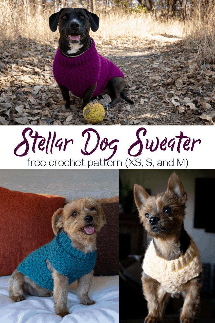 Stellar Dog Sweater crochet pattern